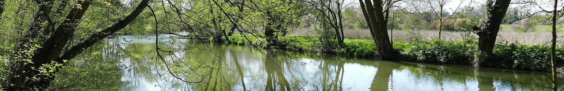 Entretien et protection des cours d'eau